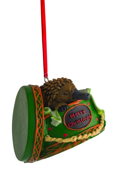 Echidna in Giftbox Hanging Decoration 6cm